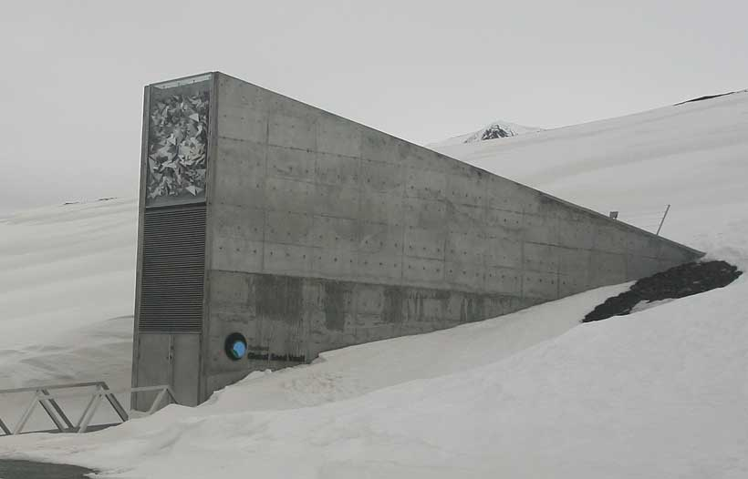 The Svalbard Global Seed Vault Awaits Its Millionth Crop Deposit