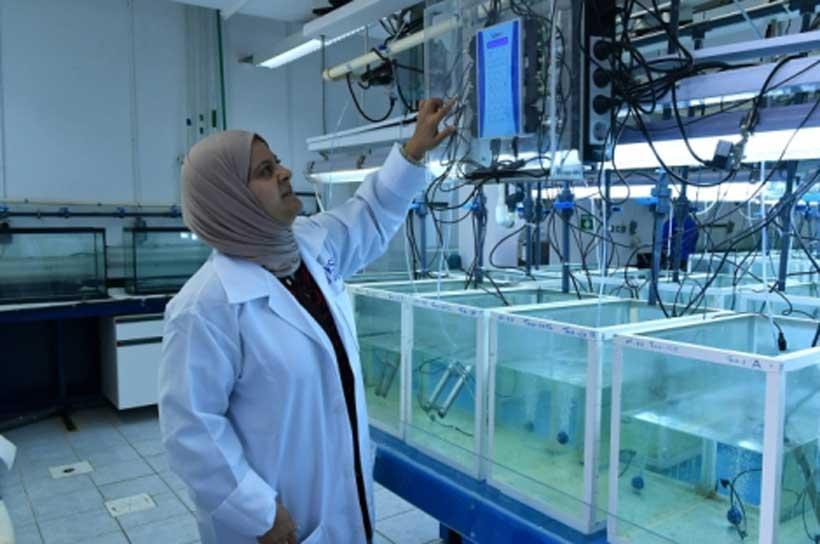 Kuwaiti Experts Use Nuclear Technology to Study the Marine
