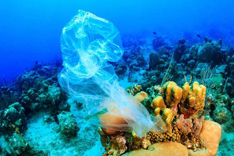 plastic bag ocean.