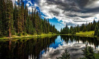 environment lake