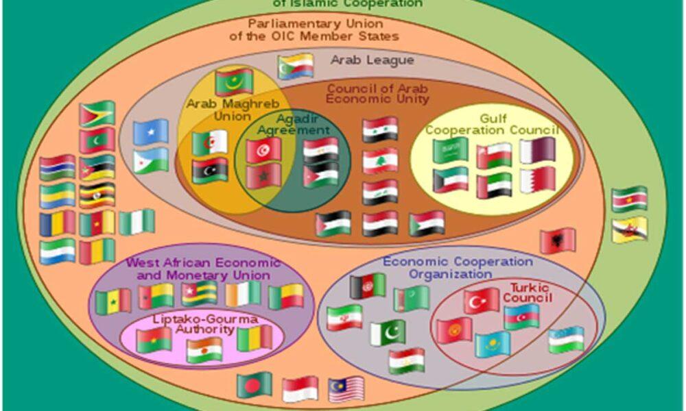 moderndiplomacy.eu: OIC for the cross-Mediterranean Betterment